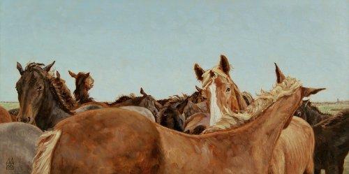 De paarden van Marrum