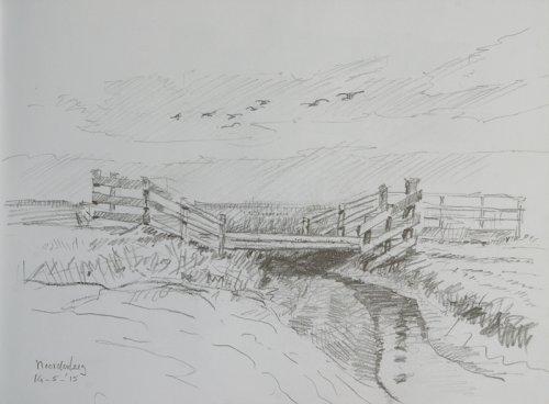 Noorderleeg, ganzen boven brug