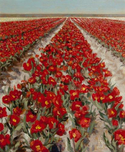 Tulpen langs de dijk