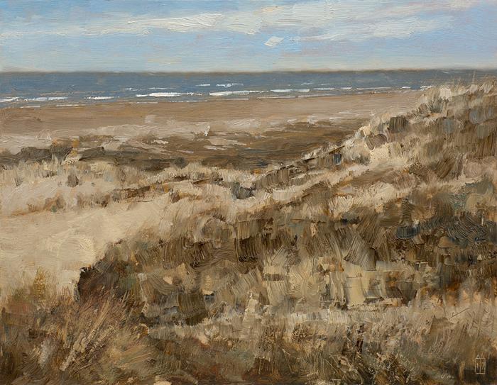Terschelling, duinen Midsland Aan Zee